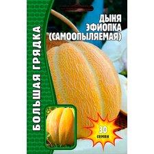 Семена Дыня Эфиопка ( Самоопыляемая), 30 сем.