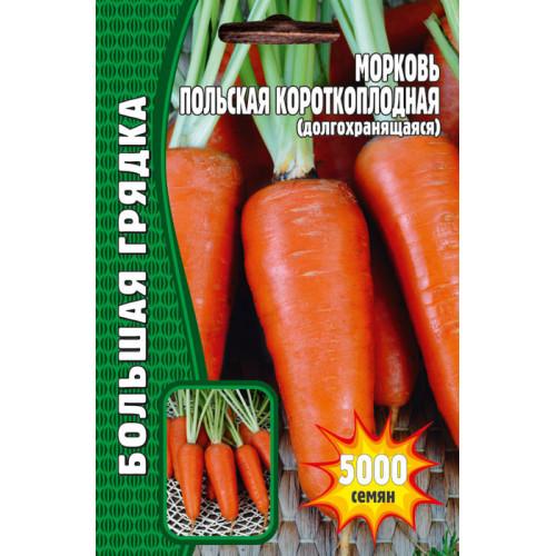Семена Морковь Польская Короткоплодная, 5000 сем.