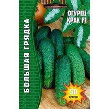 Семена огурец Крак F1, польская селекция, 50 сем.