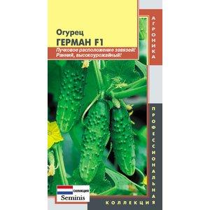 Семена Огурец ГЕРМАН F1 Селекция Seminis (Нидерланды), 5 сем.