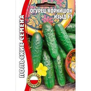 Семена огурец Изыд F1, польская селекция