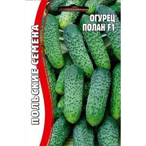 Семена огурец Полан F1