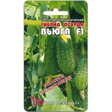Семена Огурец Вьюга F1, 8 сем