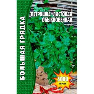 Семена Петрушка Листовая Обыкновенная, 5000 сем.