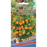 Семена томат Балконное чудо оранжевое, 12 сем