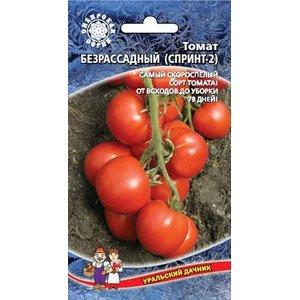 Семена Томат Безрассадный (Спринт-2), 0.1г