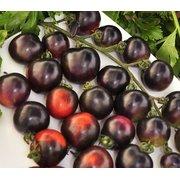 Семена Томат F1 Черная гроздь, 10 сем