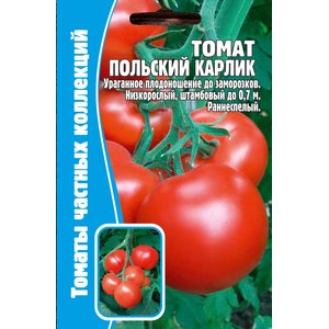 Семена томат Польский карлик, 12 сем.