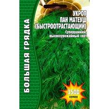 Семена Укроп Пан Матеуш (Быстроотрастающий), 3500 сем.