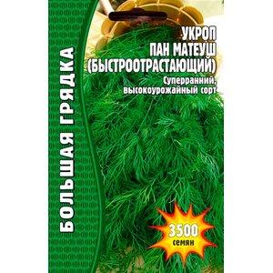 Семена укроп Пан Матеуш (Быстроотрастающий)