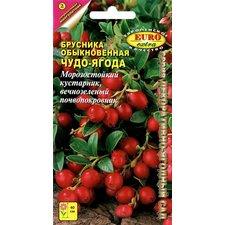 Семена Брусника обыкновенная Чудо-Ягода, 0,004г