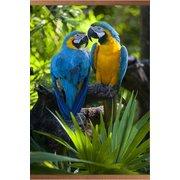 Гибкий пленочный инфракрасный обогреватель-картина Попугаи