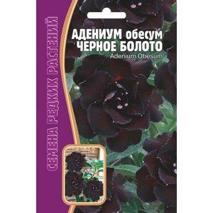 Семена Адениум Черное Болото, 3 шт.