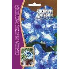 Семена Адениум Голубой, 3 шт.
